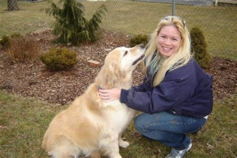 golden retriever rescue new jersey golden retriever rescue inc nj newsletter 2007letters to breeds picture