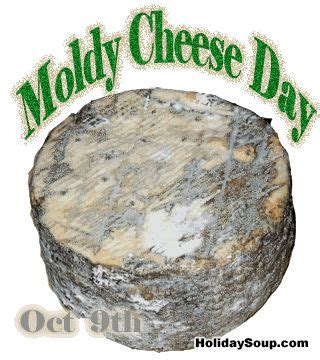 the cheese is old and moldy where is the bathroom cheese day and cheese on pinterest