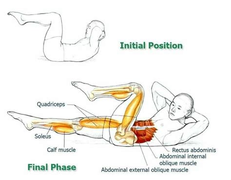 33 best lower back images on ab workouts