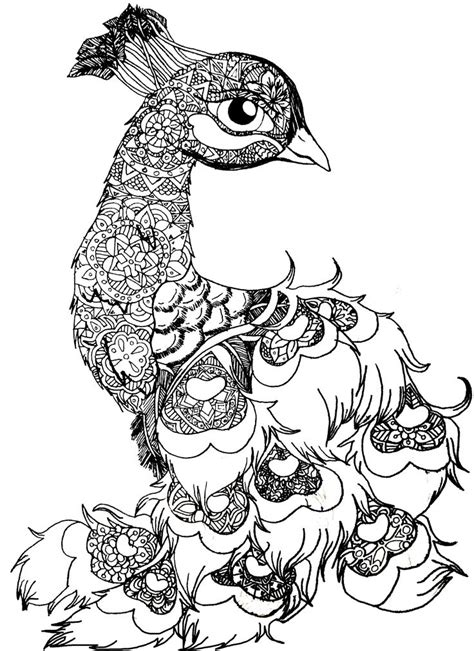 bird mandala coloring pages b w peacala peacock animal bird drawing blackandwhite