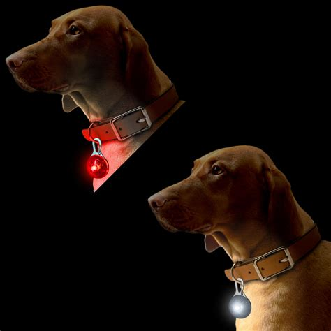 puppy light white led safety clip on light pendant for running walking cycling with 3