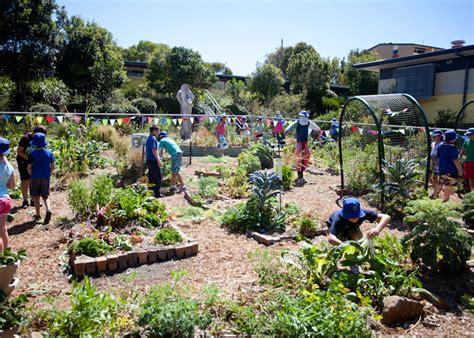 Kitchen Garden Farming In Kenya Edible School Gardens