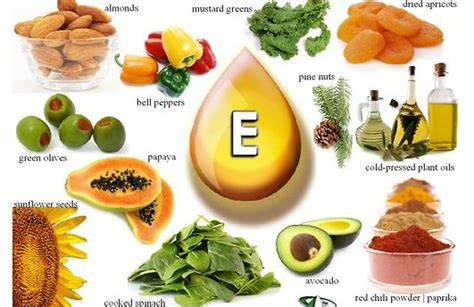 vitamin e for dogs is vitamin e for dogs dr mahaney