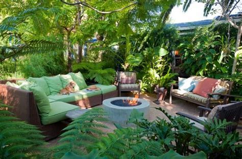 Tropical Backyard Landscaping Ideas Lush Tropical And Drought Tolerant Plants Bromeliads Orchids Tree Ferns Enclose The Space