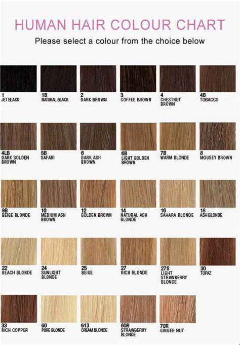 yaki hair color chart 8 quot 22 quot yaki 100 indian remy human hair lace wig perruque 1b ebay