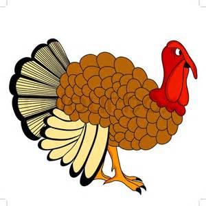 thanksgiving turkey vector thanksgiving day turkey stock vector colourbox