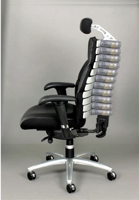 ergonomic chair   adjustable backbonespine