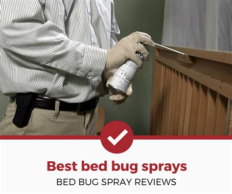 bed bug spray reviews bed bug spray reviews bedding sets