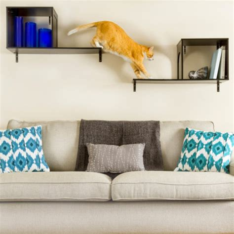 Contemporary Accessories For Your Pet by Cats Cat Furniture Cat Tree