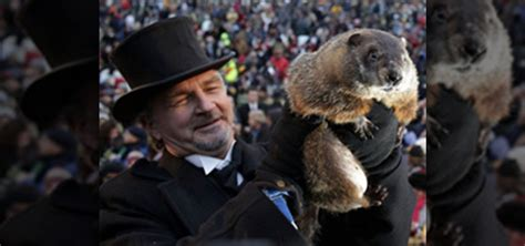groundhog day live how to the official 2011 groundhog day ceremony live