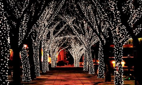 installation of fairy lights in trees string of 100 led solar lights groupon goods