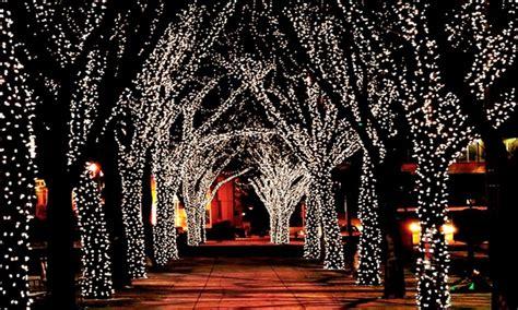 fairport tree lighting string of 100 led solar lights groupon goods