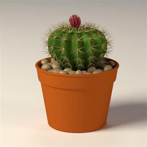 cactus pots 3d model cactus pot