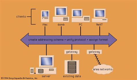 Computer Network Architect by Computer Systems Architecture Images