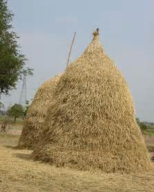 Multi Family Homes Plans hay stack