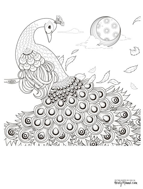 ocean border coloring page free ocean border coloring pages