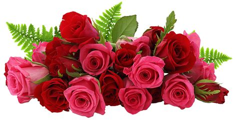 new year flower png new hd valentines png png bunty singh