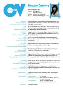 I T Curriculum Vitae by Blue Curriculum Vitae By Tjei On Deviantart