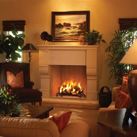 Fmi Fireplaces Reviews by Astria No Glass Friendly Firesfriendly Fires