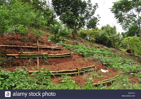 Vegetable Garden On A Slope View From Seven Waterfall Trail Soil