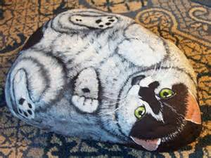 paint like cat resonating with a rock the photogenic lifestyle of