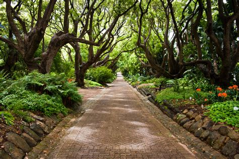 20 Botanical Gardens With Beauty To Behold Holiday Cape Town Botanical Gardens