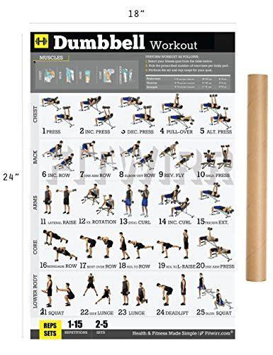 fitwirr s dumbbell workout sale r50 your