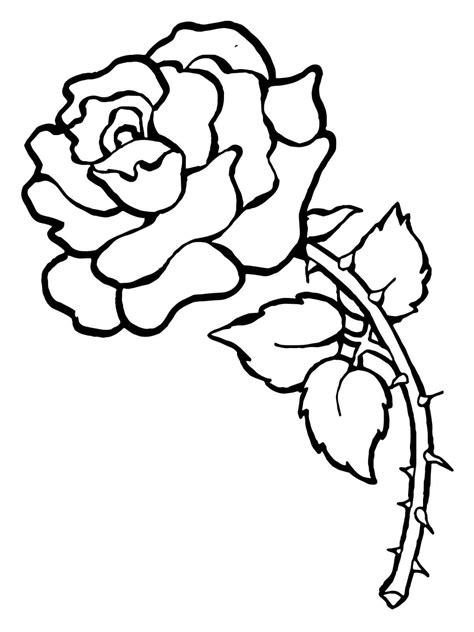 imagenes de flores para imprimir gratis dibujos de rosas sketch coloring page