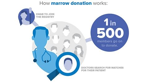 Pbsc Finder Steps Of Bone Marrow Donation Or Pbsc Donation