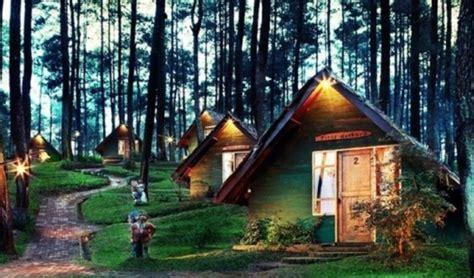 sejuknya menginap  rumah kurcaci  hutan pinus lembang