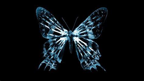 imagenes efecto mariposa el efecto mariposa en la teor 237 a del caos