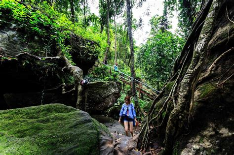 phnom kulen waterfalls river   thousand lingas