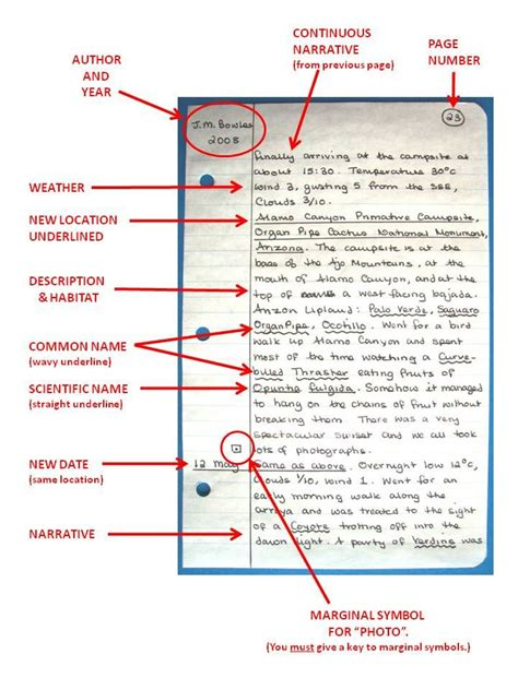 journal writing layout 17 best images about notebooks moleskines paper pens