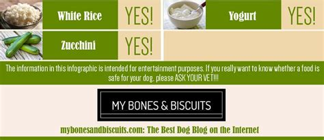 can dogs eat tofu can dogs eat this check out this ultimate 150 types of foods guide