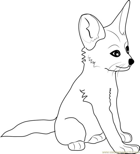 Coloring Page Fox by Baby Fox Coloring Pages Coloring Home