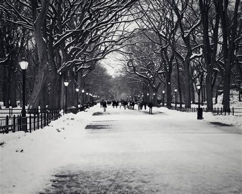 black winter black winter 16 free hd wallpaper hdblackwallpaper