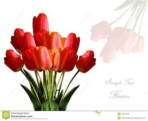 fiori con auguri biglietto di auguri per il compleanno con i fiori