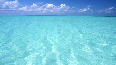 teal water free wallpaper top model pictures free