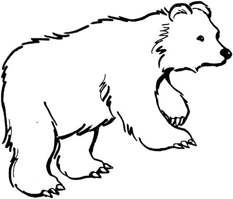 white bear coloring pages one way to launch a library playing by the book