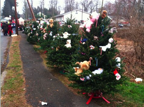 photo of the week christmas tree memorial for victims of