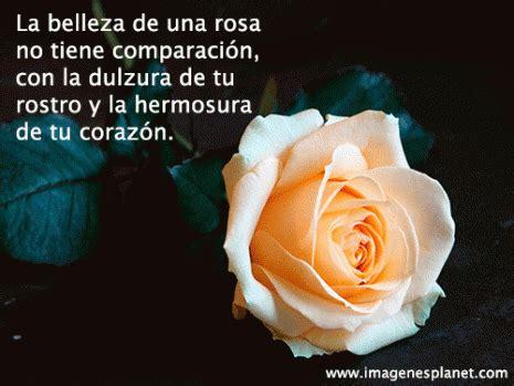 imagenes flores y frases mensajes de amor con flores para el whatsapp descargar y