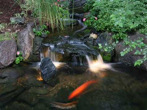 Aquascape Pond Lights by Pond And Landscape Lighting Tropical Landscape
