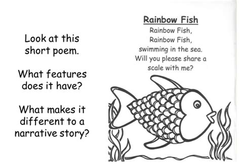 year 1 poetry pattern and rhyme planning commotion in the ocean year 1 weekly plan and resources