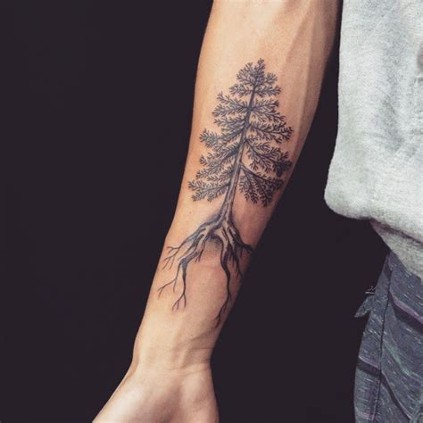 simple tree tattoo 30 simple and easy pine tree designs for everyone