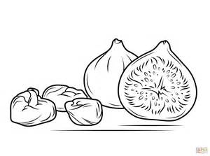 fig color fresh and figs coloring page free printable coloring