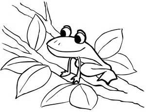 frog coloring pages free printable frog coloring pages for