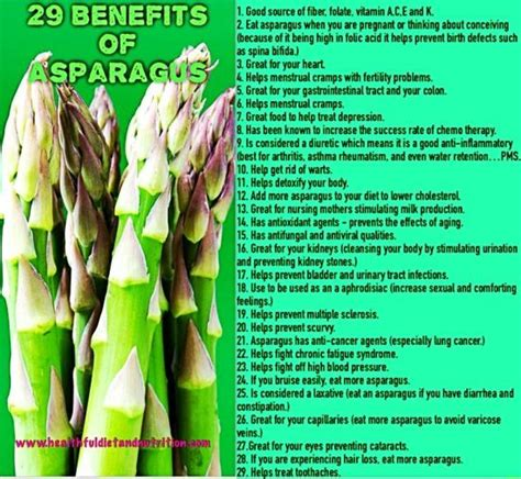 Does Asparagus Detox Your System best 25 benefits of asparagus ideas on