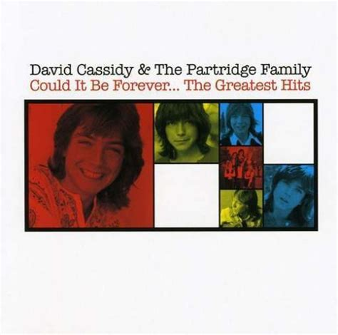 puppy song lyrics david cassidy the puppy song lyrics songtexte lyrics de
