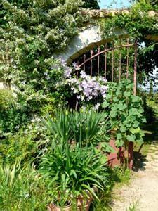 Plan De Jardin Sauvage by Fleurs De Jardin Sauvage