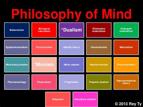 i am not a brain philosophy of mind for the 21st century books 2013 ty different areas of philosophy